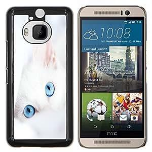 Queen Pattern - FOR HTC One M9+ / M9 PLUS - cat white kitten blue eyes portrait mongrel - Cubierta del caso de impacto con el patr???¡¯???€????€???&Ac