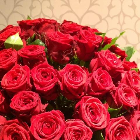 Versandkostenfrei 20 Rote Rosen Mit Xxl Blutenkopfen Gratis