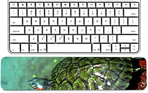 Luxlady Keyboard Wrist Rest Pad Long Extended Arm Supported Mousepad IMAGE ID: 30901311 A pair of turtles that are kept water reservoirs in Ponorogo East Java I