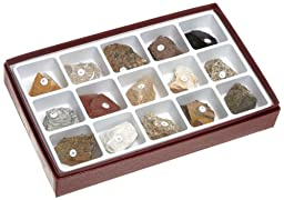 American Educational Introductory Rock Collection