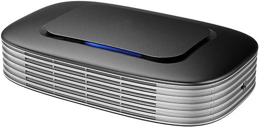 ABZ El purificador de automóviles Elimina el Olor, la neblina, el formaldehído y el purificador de aniones particulados PM2.5, sin Necesidad de reemplazar el Elemento filtrante, Gris: Amazon.es: Hogar