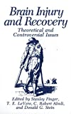 img - for Brain Injury and Recovery: Theoretical and Controversial Issues book / textbook / text book