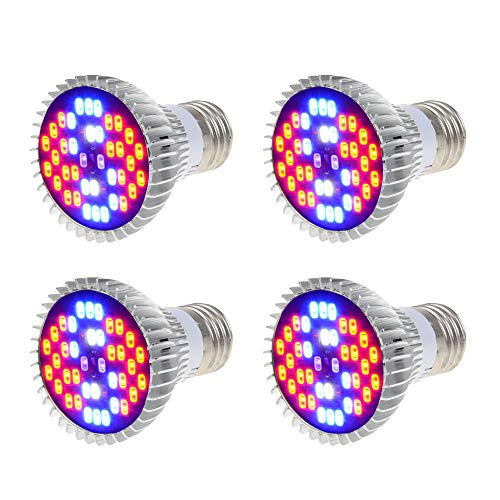 Red Led Light Pack in US - 9