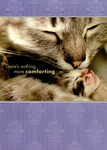 Cat Kissing Kitten: Mom - Designer Greetings Expose Mother's Day Card