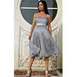 Nicole Maternity Womens Platinum and Jewels Formal Dress Gown XL
