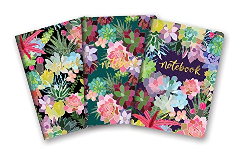 Studio Oh! Notebook Trio with 3 Coordinating Designs Available in 12 Different Assortments, Succulent (Decorative Notebooks)
