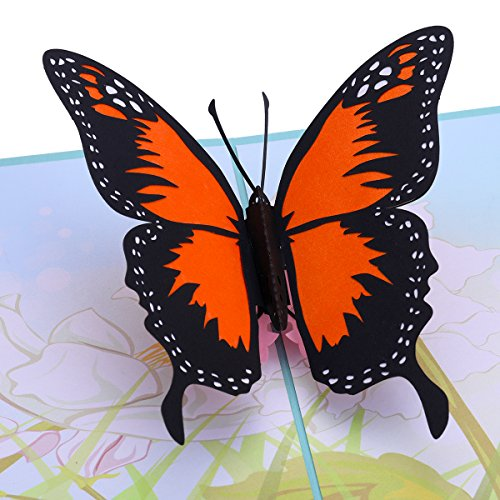 Butterfly Pop Up Card, 3D Card, Greeting Cards,Handmade Gifts Ideal for Easter, Thanks Giving, House Warming, Birthdays, Wedding or ()