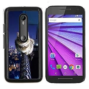 YiPhone /// Prima de resorte delgada de la cubierta del caso de Shell Armor - Cool Cat City - Motorola MOTO G3 / Moto G (3nd Generation)