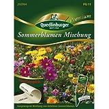 Sommerblumen Mischung Saatteppich