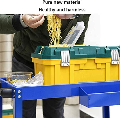 RZiioo Plastic Tool DIY Storage Chest Boxes Toolbox Lockable Removable Storage Compartment with Handle Tray,18in