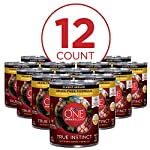 Purina-ONE-Grain-Free-Natural-Pate-Wet-Dog-Food-SmartBlend-True-Instinct-With-Real-Turkey-Venison-12-13-oz-Cans