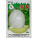 2018 Hot Sale!! Maslin Sweet Melon Hybrid Oval Fruit Seeds, 200 Seeds, Original Pack, White Skin Light Green Inside Crisp Tasty 17% Sugar