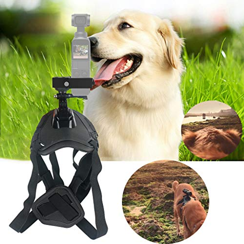 Weite Pet Dog Harness Chest Strap Belt Mount Shoot Picture for DJI OSMO Pocket