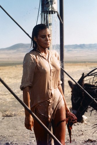 Raquel Welch Wet See Thru T-Shirt 100 Rifles Poster