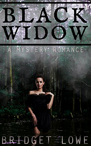 Black Widow Historical Mystery Romance ebook product image
