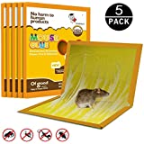 JCHope Mouse Glue Boards, Mouse Glue Traps, Mouse trap, Mouse Size Glue Traps Sticky Boards, Professional Strength Glue (5 Pack)