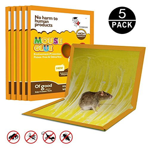 JCHope Mouse Glue Boards, Mouse Glue Traps, Mouse trap, Mouse Size Glue Traps Sticky Boards, Professional Strength Glue (5 Pack) by JCHope