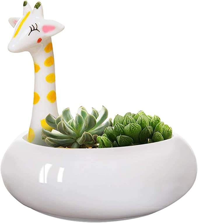 Cutest Giraffe Tabletop Planter
