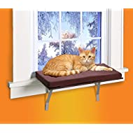 Cat Window Perches Amazon Com