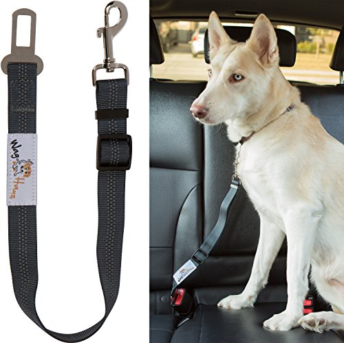 Dog Seatbelt Buckle Belt Seat Keeps Your Pet Secure And Reduces Distractions