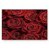 ALAGO Red Roses Flowers Doormats Entrance Front Door Rug Outdoors/Indoor/Bathroom/Kitchen/Bedroom/Entryway Floor Mats,Non-Slip Rubber Low-Profile 23.6 x 15.7