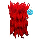 Caryko Fuzzy Bump Chenille Stems Pipe Cleaners, Pack of 100 (Red)