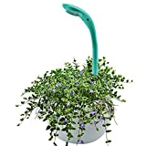 LED Indoor Hydroponics Grower Kit, CHEE MONG Garden Light Hydroponic, Grow Herbs Flowers for Office, Home, Greenhouse (BLUE)