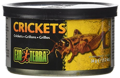Exo Terra Small Crickets - Exo Terra Reptiles Canned Food, Small Crickets, 1.2-Ounce