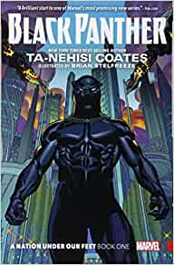 Black panther a nation under our feet book 1