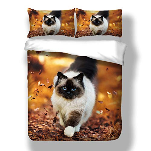 HyUkoa Autumn Leaves Cute Cat Kids Duvet Cover Set 3-Piece Quilt Cover Set-Extremely Soft & Durable Grass Running Cat Bedlinen Sheet No Comforter,Color 5 US Queen Size - Quilt Autumn Leaves