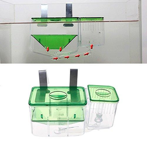 Shoresu Clear Fish Breeding Isolation Box Tank Aquarium Auto Circulating Fish Hatchery Transparent 10 x 13 x 7cm by Shoresu