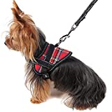Alfie Pet by Petoga Couture - Justice Harness Vest and Leash Set - Color Red, Size: Small