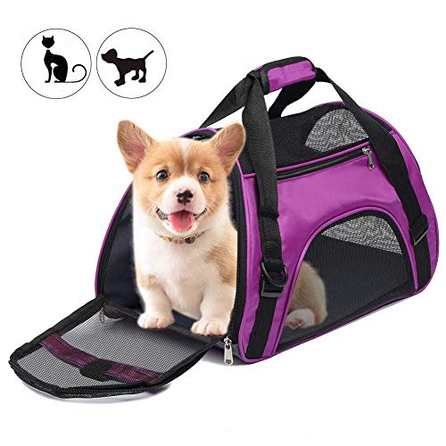 Anyifan Airline Approved Dog Carrier and Cat Carrier, Soft-Edged Portable Pet Travel Carrier, Zipper Lock Collapsible…