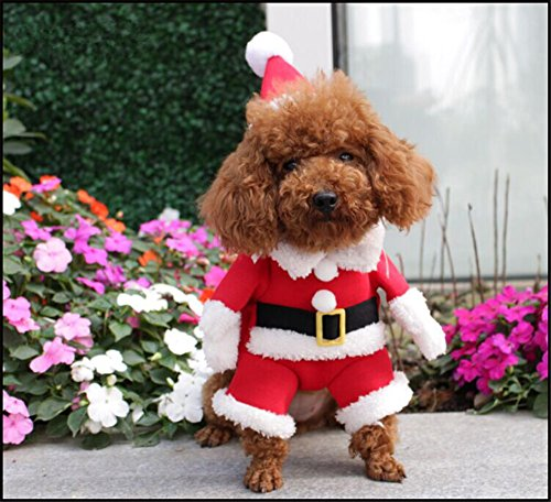 NACOCO Pet Christmas Costumes Dog Suit with Cap Santa Suit Dog Hoodies (Medium)