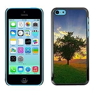 "For Apple iPhone 5C , S-type Naturaleza Hermosa Forrest Verde 109"" - Arte & diseño plástico duro Fundas Cover Cubre Hard Case Cover"