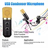B&I MK - F100TL USB Condenser Studio Sound Recording Microphone with Stand
