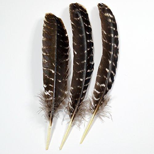 3 Stück Räucherfedern Naturfedern Truthahn Indianerfedern