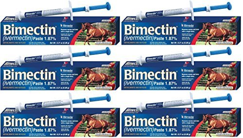 Bimectin Ivermectin Paste Horse Wormer (1.87 Ivermectin) - 6 DOSES, Model: , Home & Outdoor Store by Myhoovesandpaws