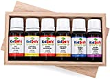 Plant Therapy KidSafe Starter 6 Set- Includes 100% Pure, Undiluted Synergies: A+ Attention, Calming The Child, Germ Destroyer, Immune Boom, Nighty Night and Sniffle Stopper. 10 ml (1/3 oz) each.