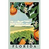 "Orange Juice Tree Flower Farm Landscape in Florida Travel Tourism 20"" X 30"" Image Size Vintage Poster Reproduction we have other sizes available"