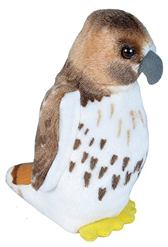 (Wild Republic Audubon Birds Red Tailed Hawk Plush with Authentic Bird Sound, Stuffed Animal, Bird Toys for Kids & Birders)