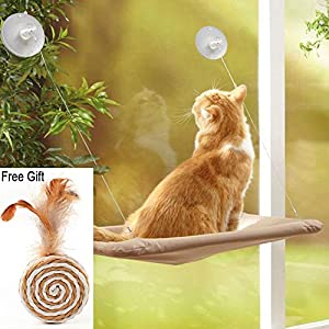 ZALALOVA Window Cat Seat, Cat Window Perch Hammock Space Saving Design w/1Pc Funny Cat Toy 2Pcs Extra Suction Cup Window Seat Cat Shelves All Around 360° Sunbath Holds Up to 50lbs for Any Cat Size 47