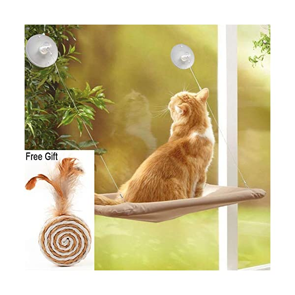 ZALALOVA Window Cat Seat, Cat Window Perch Hammock Space Saving Design w/1Pc Funny Cat Toy 2Pcs Extra Suction Cup Window Seat Cat Shelves All Around 360° Sunbath Holds Up to 50lbs for Any Cat Size 1