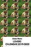 Chow Chow Lovers Calendar 2019-2020