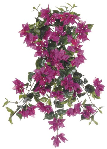 Artificial 24-inch Violet Fuchsia Bougainvillea Trailing Bush (Set of 6) by House of Silk Flowers