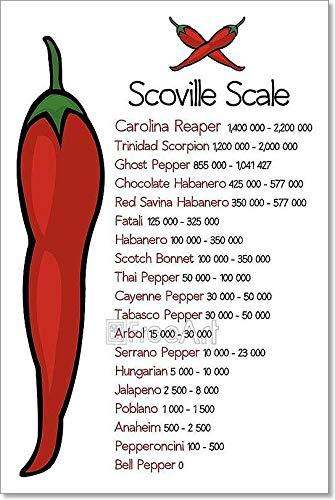 Amazon com: Barewalls Scoville Pepper Heat Scale Paper Print