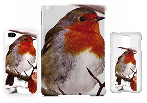 Robin red breast 3 iPhone 5 / 5S cellulaire cas coque de téléphone cas, couverture de téléphone portable