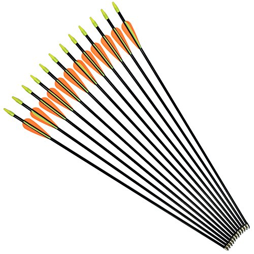 NIKA ARCHERY Fiberglass Arrows for Youth Practise Recurvebow Compound Bow Shooting 12X 26 (Fiberglass Archery Bows)