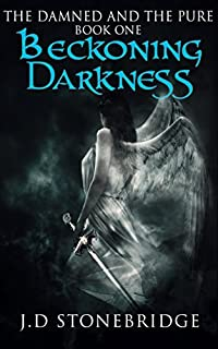 Beckoning Darkness by J.D. Stonebridge ebook deal