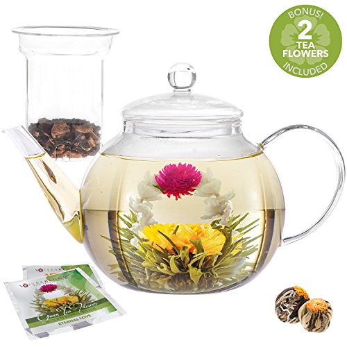 Teabloom Teapot Gift Set – Stovetop Safe Glass Teapot with 2 Gourmet Blooming Teas & Removable Glass Infuser for Loose Leaf Tea – Holds 6-8 Cups (40 oz Teapot)